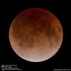 あたりを明るく照らしていた冬の満月が、少しずつ欠けていくと同時にその輝きを失っ...
