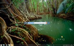 Download Bing Desktop for Windows 7
