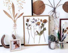 Obrazy zo sušených kvetov