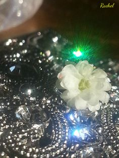 Sparkling Baby's Breath #BabysBreath