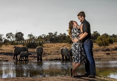 Darrell Fraser Safari Engagement Photographer at Adventures with Elephants #engagement #photographer #love #gettingmarried #couple #photography #safari