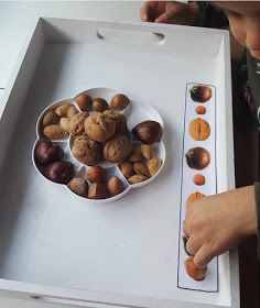 Autumn Activities, Projects To Try, Fruit, Food, Autumn, School, Autumn Trees, Infant Activities, Alcohol Games