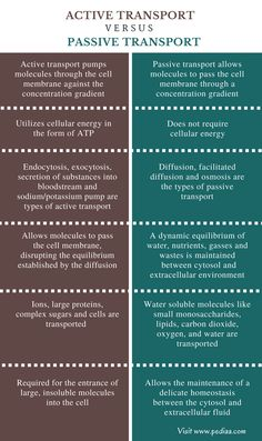 Difference Between Active and Passive Transport - Comparison Summary Study Biology, Biology Lessons, Ap Biology, Teaching Biology, Science Biology, Medical Science, General Biology, Physical Science, Earth Science