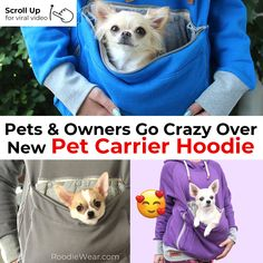 Roodie - Pet Carrier Hoodies - OMG! SO CUTE! I'll take my pets everywhere! www.roodiewear.com I Love Dogs, Puppy Love, Animals And Pets, Cute Animals, Crochet Dog Sweater, Pet Guinea Pigs, Cute Chihuahua, Pet Carriers, Pet Accessories