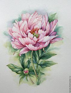 """Купить Рисунок """"Розовый пион"""" акварель - розовый пион, пион, рисунок пиона, пионы акварель"""