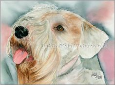 """The More the Terrier,"" a Sealyham Terrier painting by Judith Stein, an artist in Phoenix. Love me some Sealyhams. Terrier Breeds, Terrier Dogs, Terriers, Sealyham Terrier, Artist Bio, Companion Dog, Border Terrier, London Art, Art History"
