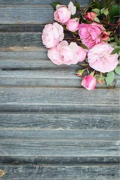 Sale US $9.99  LIFE MAGIC BOX Photography Background Woods Fondos Estudio Fotografico Newborn Photographie Props Backdrops Amy-Wooden-021   #LIFE #MAGIC #Photography #Background #Woods #Fondos #Estudio #Fotografico #Newborn #Photographie #Props #Backdrops #AmyWooden  #CyberMonday