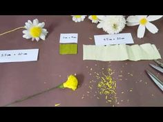 DIY craft tutorials- How to make paper daisy by crepe paper - YouTube