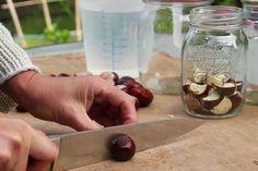 A kosárba gyűjtött barna termések kincset érhetnek! Az alábbi videó két pofonegyszerű módszert mutat be arra, hogy miként lehet a vadgesztenyéből mosószert készíteni. Keto, Desserts, Food, Zero Waste, Deserts, Dessert, Meals, Yemek, Postres