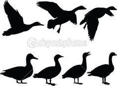 Vector Illustration of vector silhouette flying ducks on white background - Search Clipart, Illustration, Drawings, and EPS Clip Art Graphics Images Duck Silhouette, Silhouette Tattoos, Silhouette Clip Art, Silhouette Portrait, Bird Outline, Bird Template, Magazine Collage, Duck Hunting, Pallet Art