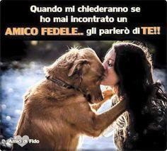 Amico Fedele