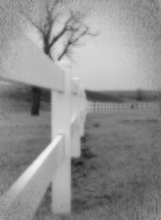 #fences#fallday#cemetery