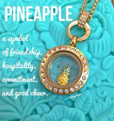 Did you know a pineapple is a symbol of friendship?   Origami Owl 2014 Spring Collection is now available so go check it out.