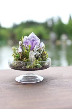 Best Amazing Magical Crystal Gardens Ideas Picture 7 How do you describe a crystal garden? Terrarium Wedding, Garden Terrarium, Succulent Terrarium, Crystal Terrarium Diy, Crystal Centerpieces, Crystal Decor, Crystal Room, Crystal Magic, Air Plants