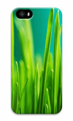 Grass 3 3D Case new iphone 5S covers for Apple iPhone 5/5S Case for iphone 5S/iphone 5,http://www.amazon.com/dp/B00KF25ESG/ref=cm_sw_r_pi_dp_NwWGtb0X4HCJB5PR