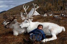 Puur leven van de Dukha stam, het rendiervolk van Mongolië | lees hun verhaal en bekijk de hele fotoserie op Paradijsvogels Magazine
