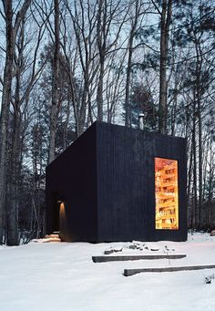 a black box in the woods