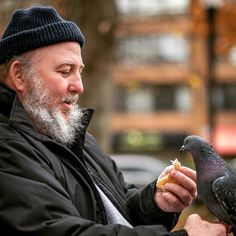 """From @patricio_rojo  Tender moment in Victoria park.  I met this guy named Tracy and asked him if he minded me snapping a few pics of him feeding the birds. He was happy to let me so I waited for a few minutes hoping to see one come to his hand. Just when I was about to give up Tracy said """"this one'll come"""" and a pigeon flew up and landed on his hand. It ate while Tracy stroked its chest. I could tell that they had shared special moments before.  #halifax #victoriapark #nikon #halifaxnoise…"""