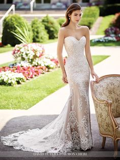 2017 DAVID TUTERA FOR MON CHERI - ROXANNE GOWN Strapless re-embroidered Alençon lace on tulle over soft satin fit and flare gown with hand-beaded sweetheart neckline and dropped waist bodice, scalloped hemline, chapel length train