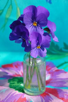 Pansy in a mason jar, simple but pretty