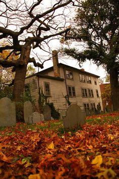 salem witch graves