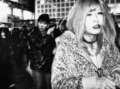 Tatsuo Suzuki Photography: 画像