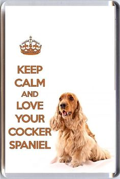 KEEP-CALM-and-LOVE-YOUR-COCKER-SPANIEL