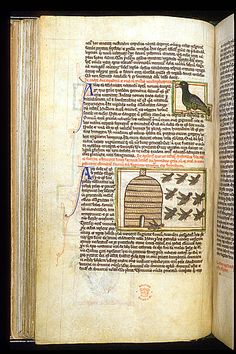 """Image of a duck and a beehive with bees. From Peraldus' """"Theological Miscellany..."""", Harley 3244, folio 58v., England, second or third quarter of the 13th century. Located in The British Library."""