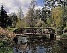 National Botanic Gardens/Dublin