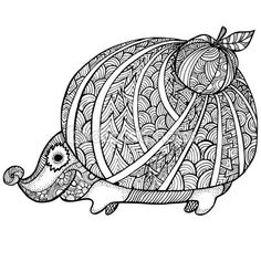 Zentangle stylized hedgehog. adult anti stress Coloring Page — Vector de stock