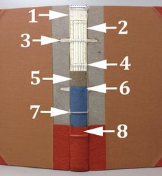 1. False endband; 2. Whip-stitching/overcasting; 3. Laced-in sunken cord; 4. Cut sunken cord; 5. Paper lining; 6. Tube hollow; 7. False rais...