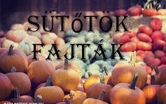 Sütőtök fajták ~ Halloween.info.hu Pumpkin, Vegetables, Halloween, Outdoor, Outdoors, Pumpkins, Vegetable Recipes, Outdoor Games, Squash