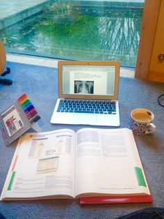 quilavastudy:Back home! Studying with the view of the pond outside :)