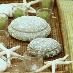 Sea urchin boxes, decorate the beach house