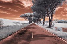 Strada di Olmi