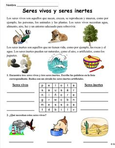 Ciencias - variety of science activities and stories in spanish Spanish Activities, Science Activities, Dolch Word List, Teachers Corner, Comprehension Activities, Preschool Curriculum, Homeschool, Spanish Language Learning, Spanish Classroom