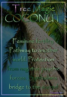 COCONUT  Feminine fertility.  Pathway to another world. Protection from negative psychic forces. Symbolises bridge to the sacred