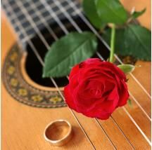 Acoustic Guitar can make your wedding special.