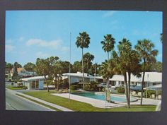 Flamingo Colony Motel Sarasota Florida FL Vintage Color Chrome Postcard c1960s