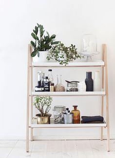 Storage Shelves with Plants | Inspiration Station by Nicole Franzen