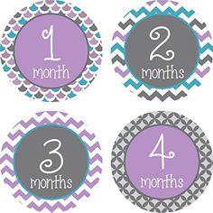 Little LillyBug Designs - Monthly Baby Stickers - Purple and Grey Sampler Little LillyBug Designs http://www.amazon.com/dp/B00OKWF9JG/ref=cm_sw_r_pi_dp_c3psvb01KV9YW