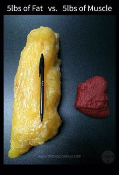 5lbs of fat vs 5lbs of muscle...