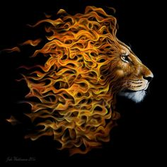 Fire Lion designed by Jake Weidmann. Calligraphy Letters Design, Lettering Design, Tattoo Cristo, Fire Lion, Prophetic Art, Fire Art, Airbrush Art, Leo Lion, Animal Drawings