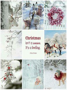 Christmas isn't a season. Christmas Collage, Noel Christmas, Little Christmas, Country Christmas, Christmas Pictures, Winter Christmas, Christmas Wreaths, Christmas Crafts, Christmas Decorations