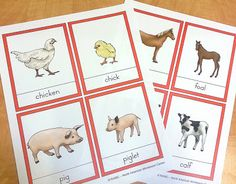 Free Montessori nomenclature printables for matching adult and baby animal names, compliments of the North American Montessori Center!