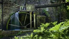 Cotehele House - restored water wheel in action producing flour © Andrew Butler