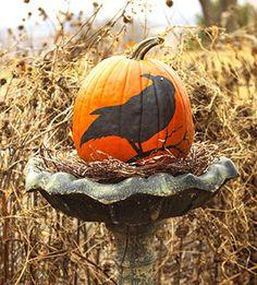 Crow Bird Bath Painted Pumpkin