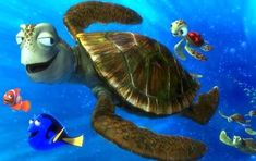 Crush and Squirt: The two main sea turtles in 'Finding Nemo' -- Crush and Squirt -- are named after popular soda brands. Finding Nemo Turtle, Finding Dory, Disney Pixar, Disney Magic, Disney Movies, Nemo Quotes, Turtle Quotes, Kai, Finding Nemo
