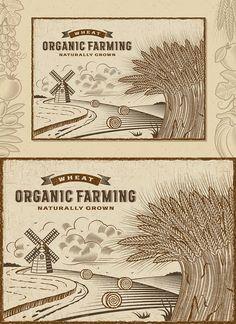 Wheat Organic Farming Landscape EPS