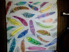 Feathers..... Feathers, Office Supplies, Color, Colour, Feather, Colors